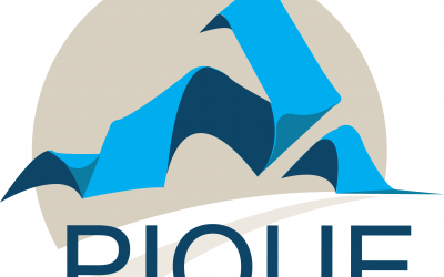 Ten at the Top to Host Pique 2020:  An Upstate Young Professional Conference on March 23rd